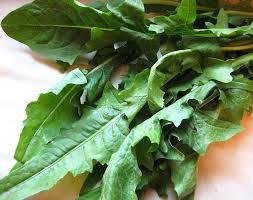 food - dandelion greens